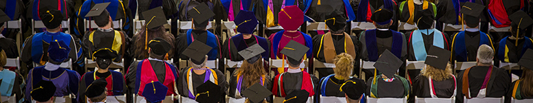 photo of a large group of faculty in their academic regalia