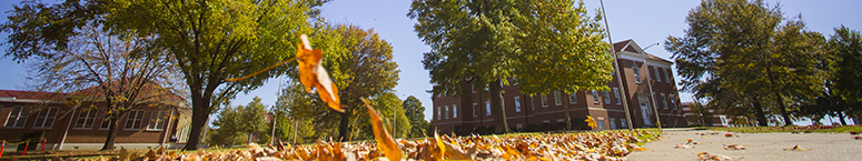 photo of crabaugh hall in the fall