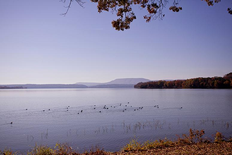 Lake Dardanelle