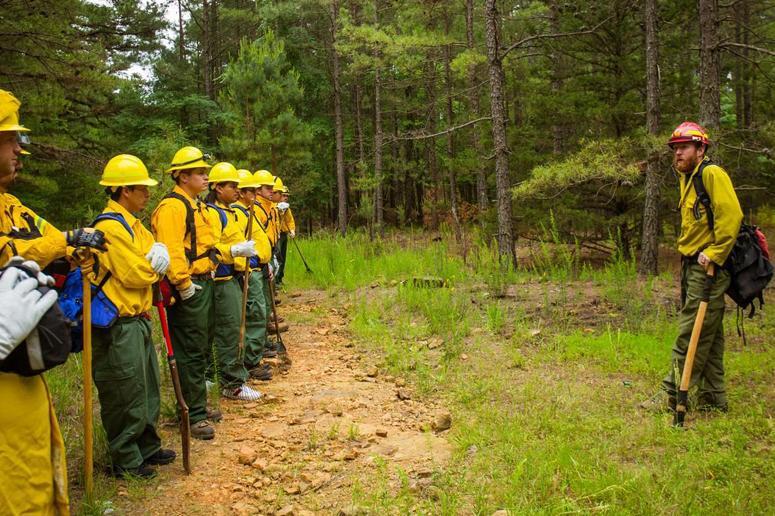 Wildland Fire Academy
